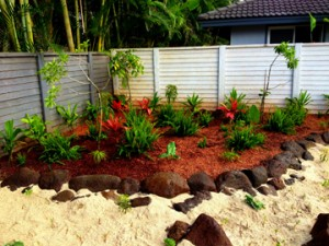 Hawaiian garden using various natives that are great for lei making.   Hui Ku Maoli Ola Landscaping Services