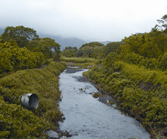 waimanalo-stream-after