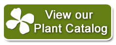 View our Plant Catelog