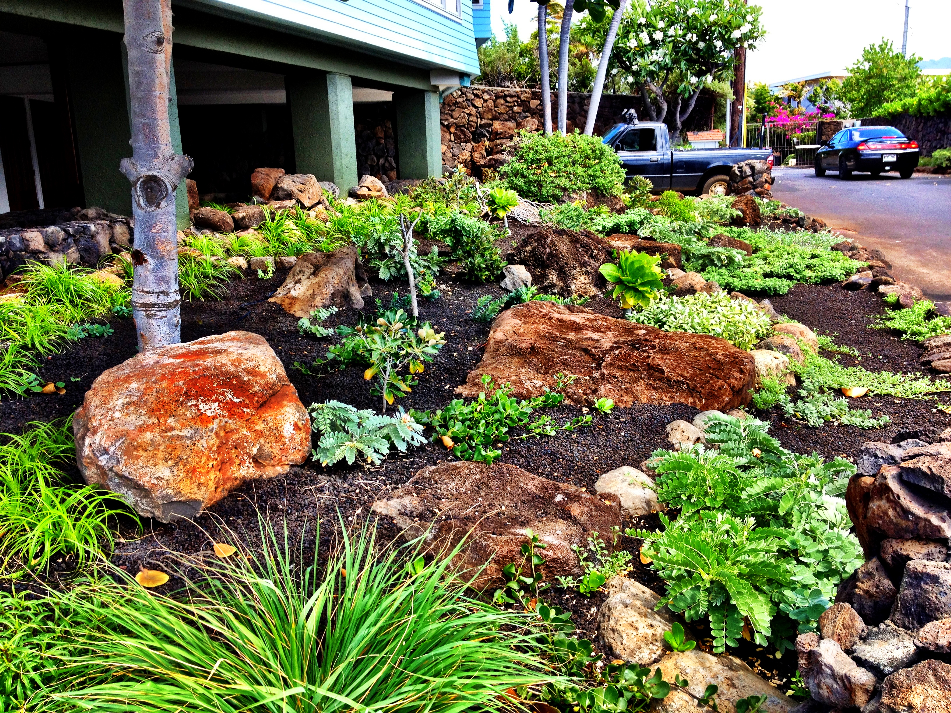 Landscaping Services on small desert yards, small cottage yards, small patio yards, small zen yards, small tropical yards, small concrete yards, small grass yards, small natural yards, small modern yards,