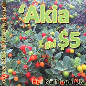 'Akia