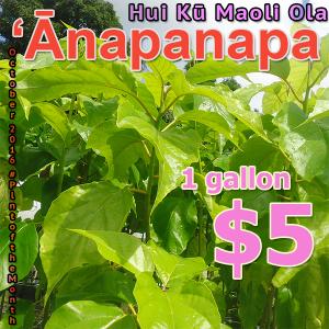 anapanapa